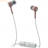 ZAGG iFrogz Audio - Coda Wireless Earbuds - Rose Gold