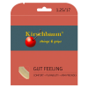 Gut Feeling Saitenset 12m